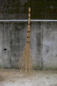 Takebouki
